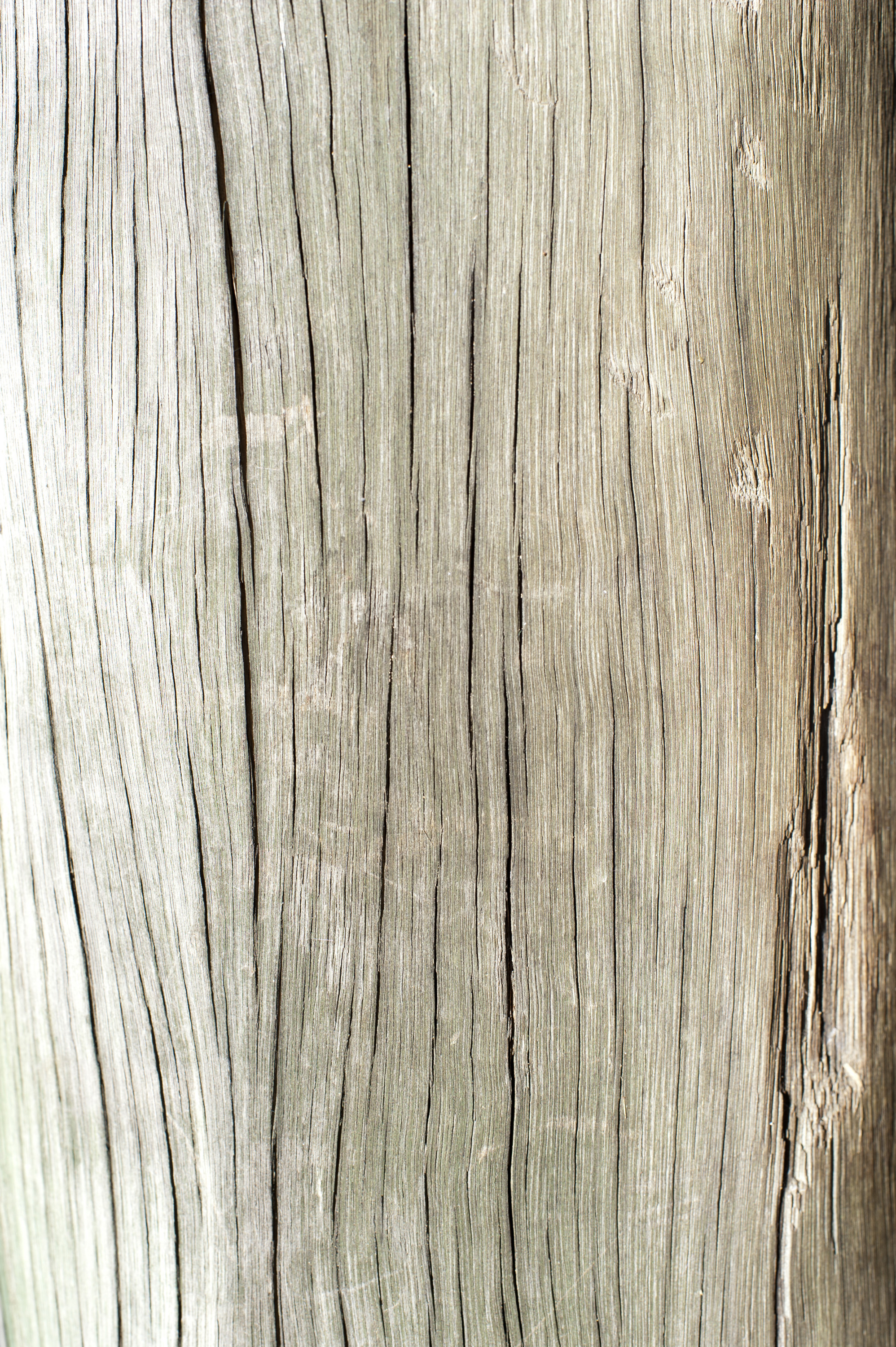 Wooden Post Texture picture wooden post texture. wood planks old texture. wood fence