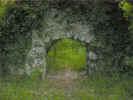 arch00041.jpg (447128 bytes)