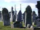 graves4902.jpg (831639 bytes)