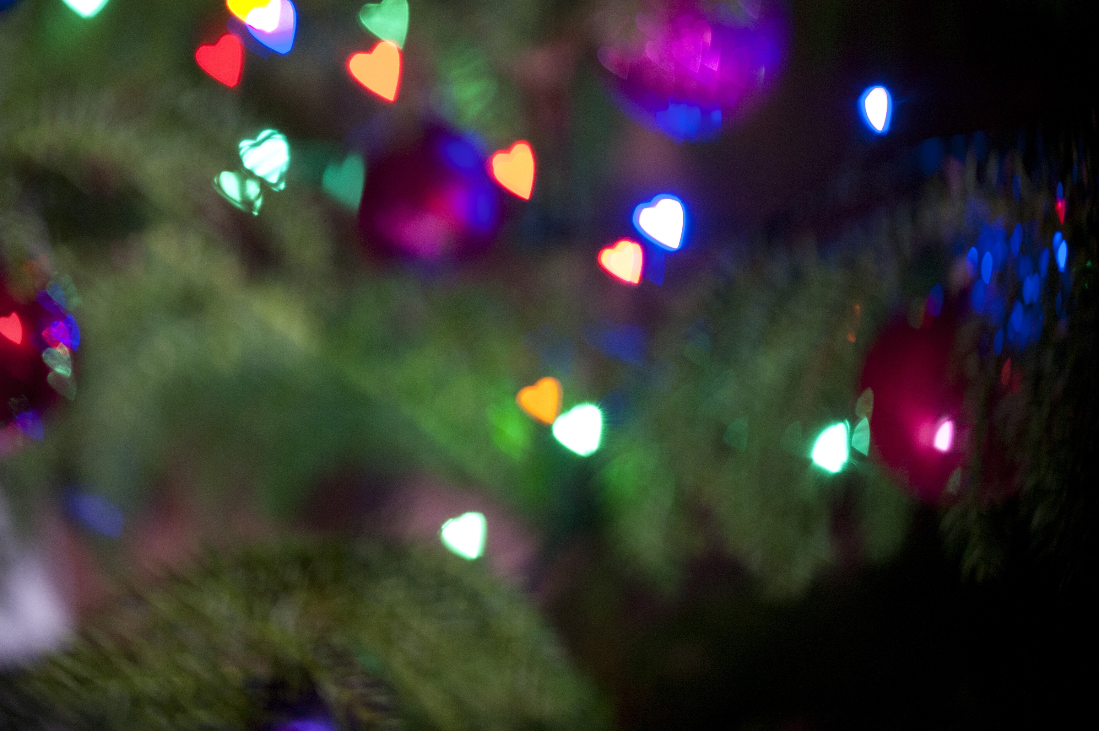 Free Image Of Christmas Tree Ornated With Heart Shaped Lights - Christmas Tree Shaped Lights