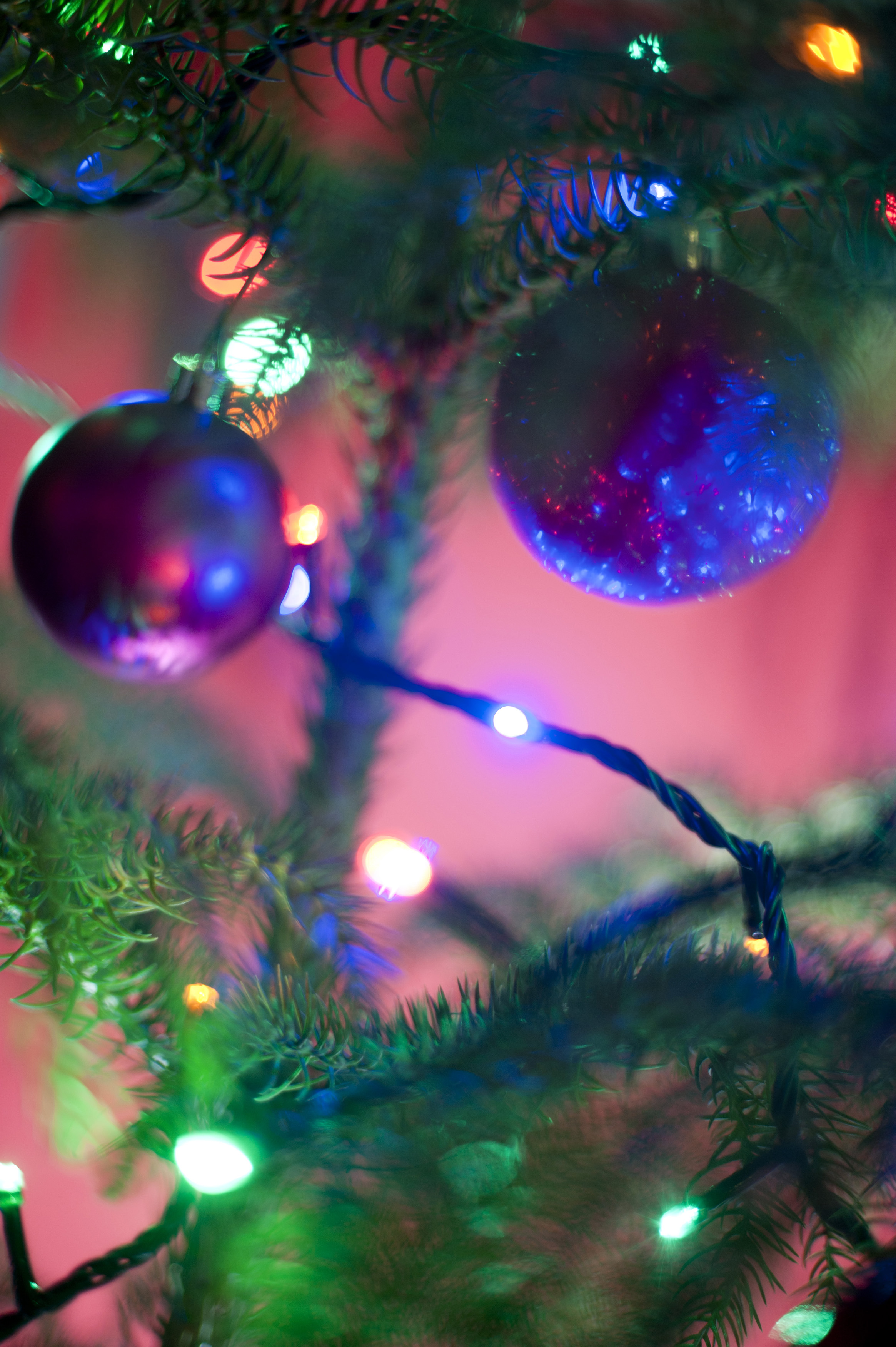 Free Image Of Close Up Decorated Christmas Tree