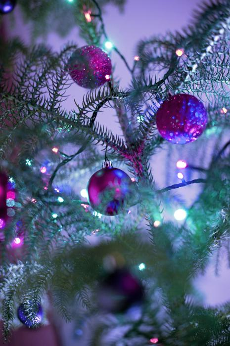Purple Christmas Tree Baubles Uk : Free image of purple themed christmas celebration
