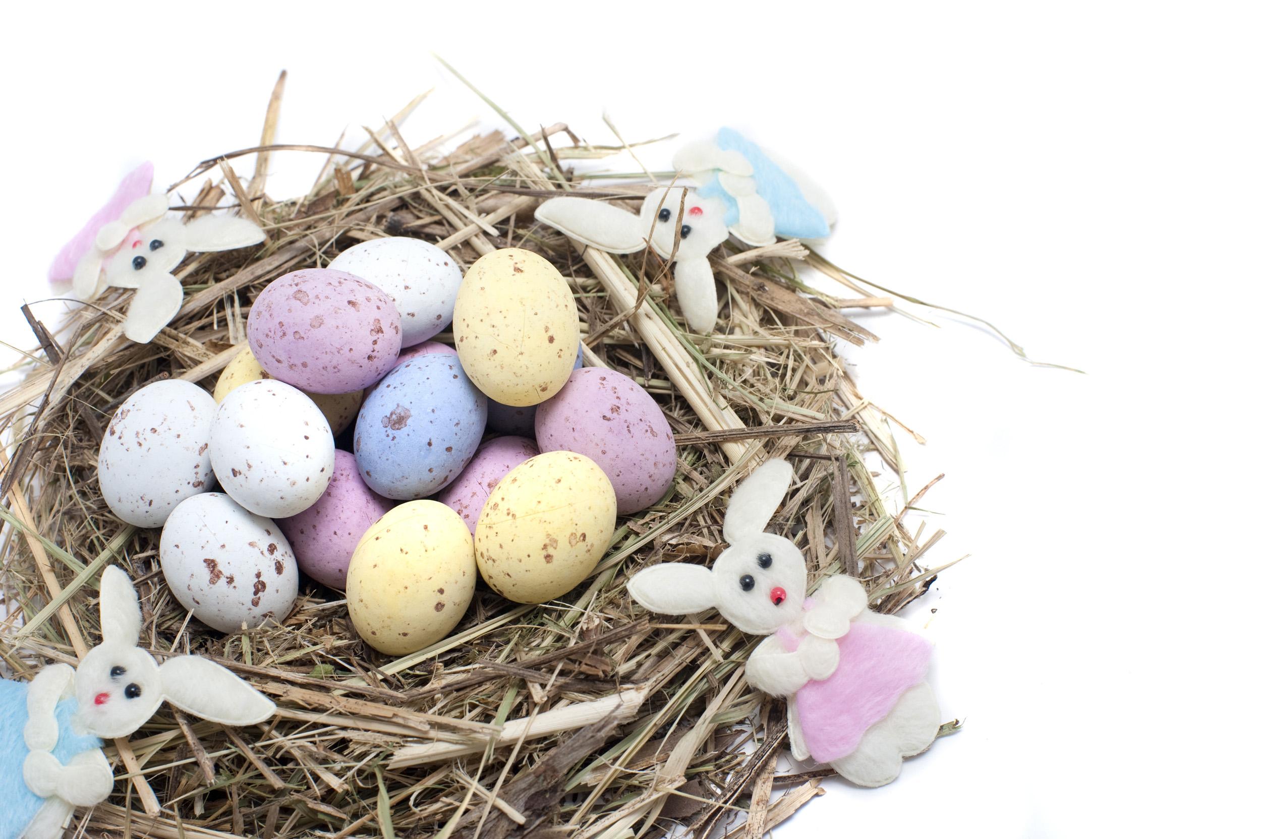 Bunny's Nest for easter