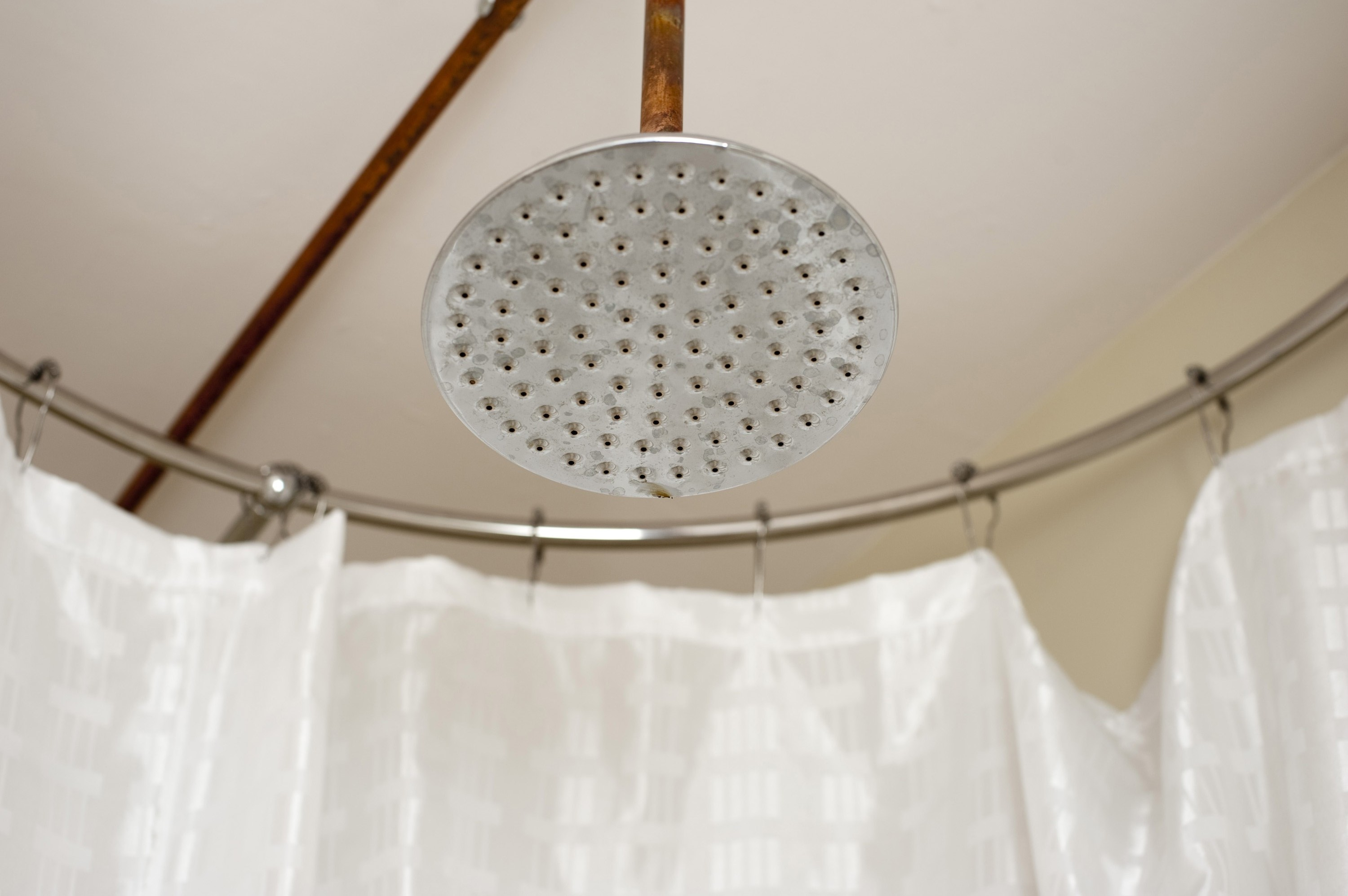 Free image of classic shower head