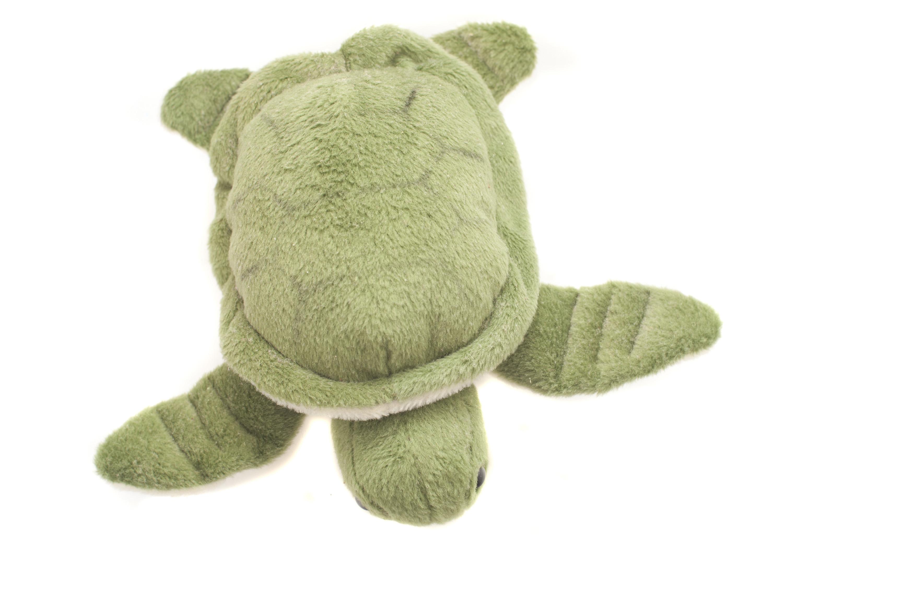 Teddy bear information and fun, teddy bears and