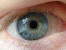 eye2314.jpg (761908 bytes)