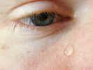 teardrops2322.jpg (473446 bytes)