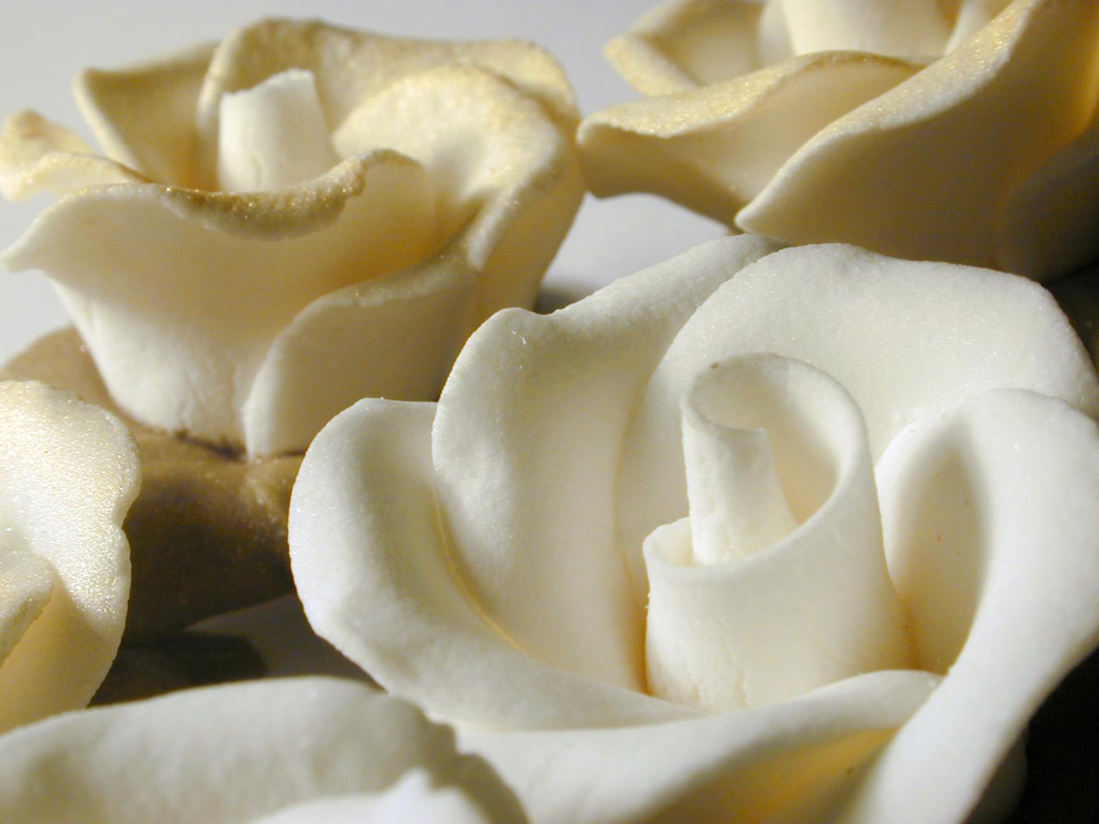icingflower3845 - Roses