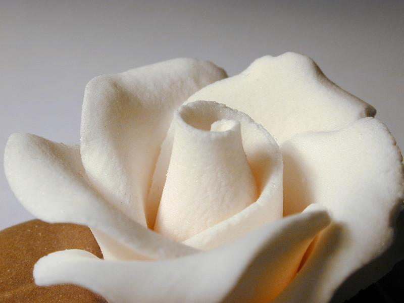 Cake Decoration Using Icing Sugar : Free image of White icing sugar flower