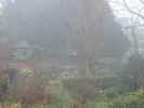 foggygarden4213.jpg (498862 bytes)