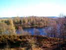 nature00918.jpg (807417 bytes)