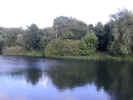 natureriver1374.jpg (598566 bytes)