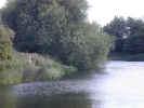 natureriver1375.jpg (697781 bytes)