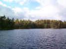 naturewater02883.jpg (262476 bytes)