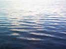 naturewater02947.jpg (423321 bytes)