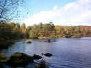 naturewater02948.jpg (519031 bytes)
