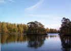 naturewater02956.jpg (287625 bytes)