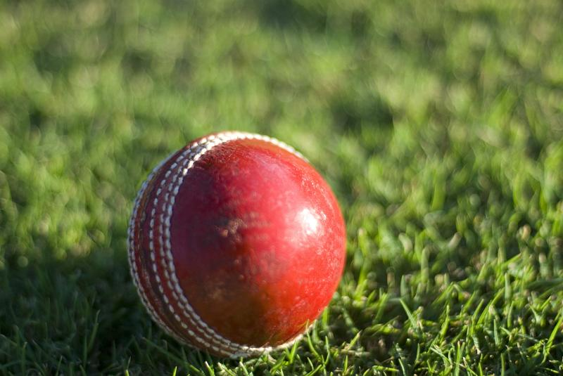 Free Image Of Cricket Ball