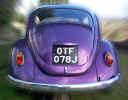 car00708.jpg (659321 bytes)