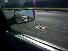 car01119.jpg (360773 bytes)