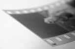 filmnegative001.jpg (400731 bytes)