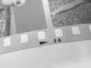 filmnegative002.jpg (413715 bytes)