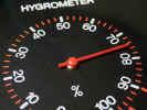 humidity2498.jpg (546715 bytes)