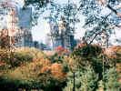 newyorkskyline13_dt800.jpg (156644 bytes)